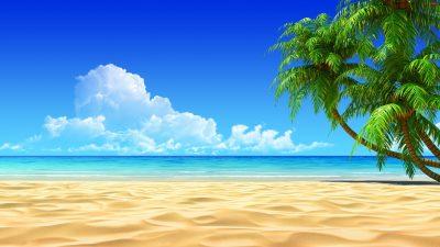 3d, Beach, Blue Sky, Nature, Palm Trees, Sand