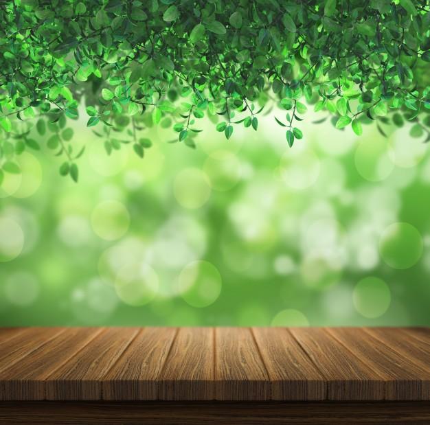 Green, Hd, Leaf, Natural, Wallpaper