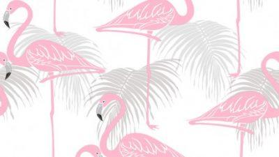 Digital, Duck, Hd, Pink, Wallpaper, White