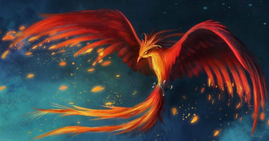 Phoenix Bird Photo