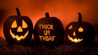Halloween, Lights, Pumpkin, Treat, Trick
