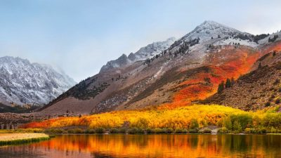 Image, Mac, Mountain, Natural, Tree, Yellow