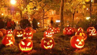 Halloween, Lights, Natural, Tree, Yellow