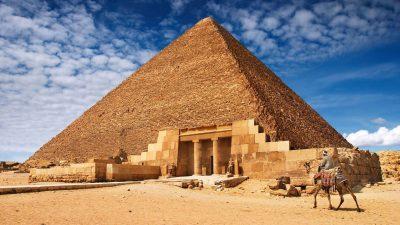 4k, Camel, Egypt, Natural, Wallpaper
