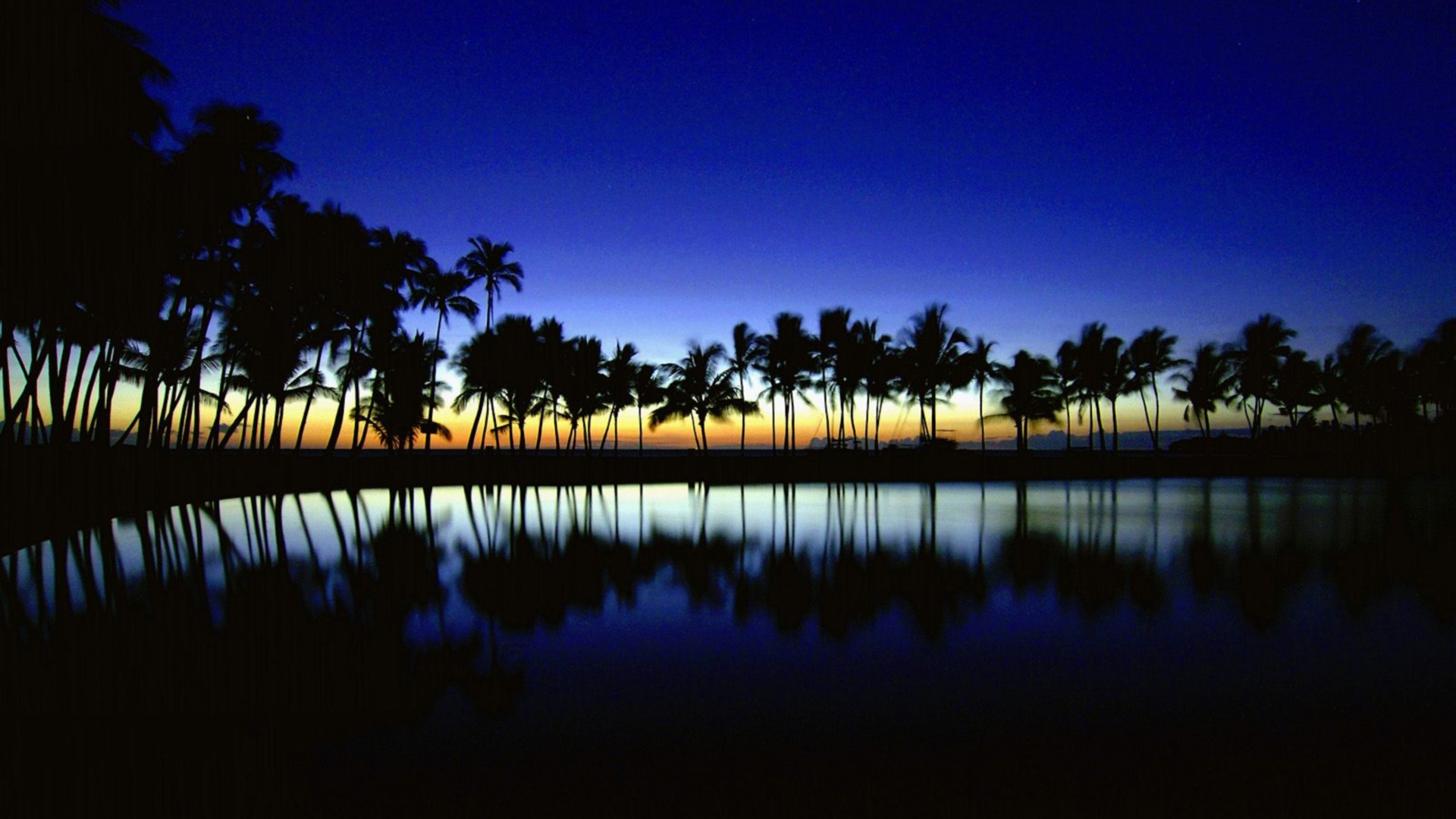 1080p Photo 1080p 4k Blue Nature Sunrise Trees Hd 2811