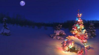 Beautiful, Christmas, Moon, Night, Tree, Wallpaper
