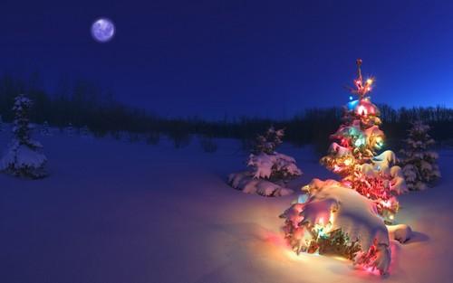 Beautiful Christmas Background.Christmas Background Beautiful Christmas Moon Night