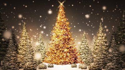 Christmas, Golden, Hd, Image, Tree