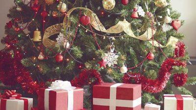 3d, Christmas, Fantastic, Image, Tree