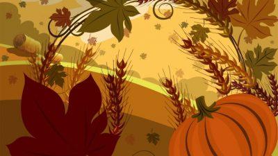 Floral, Hd, Stunning, Thanksgiving, Wallpaper