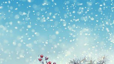 Animated, Christmas, Decoration, Image, Sky