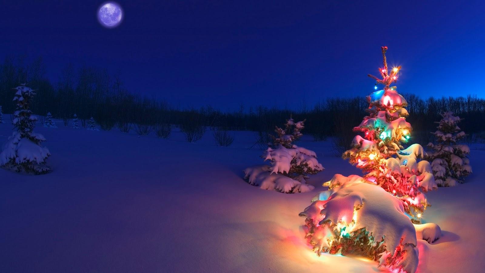 Hd Christmas Wallpaper Decorated Digital Hd Snowfall Tree Wallpaper Events 3145
