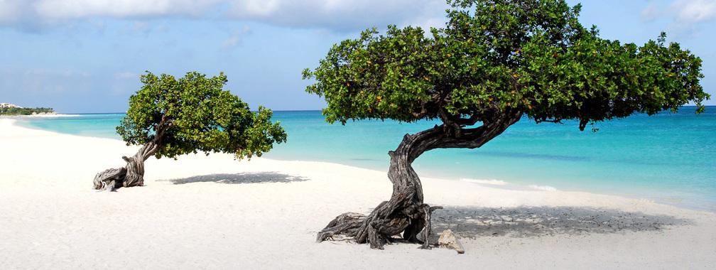Aruba image