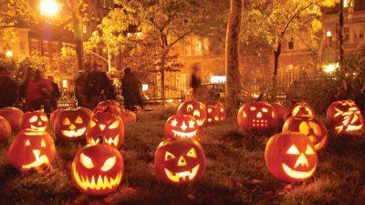 Halloween, Hd, Image, Pumpkins