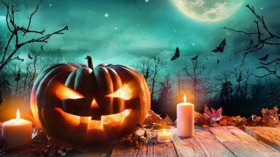 Candle, Halloween, Hd, Image, Pumpkin