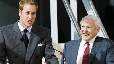 Hd, Image, Photo, Prince William
