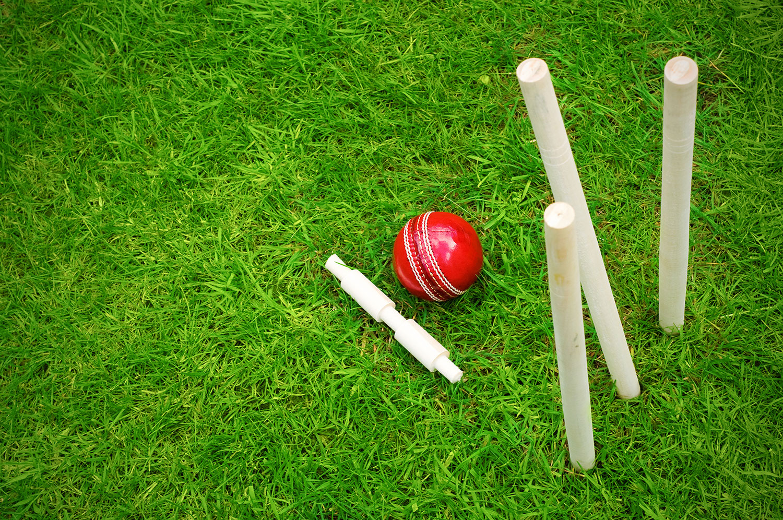 Cricket Wallpaper