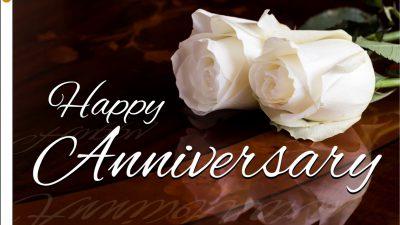 Anniversary, Fantastic, Happy, Hd, Photo