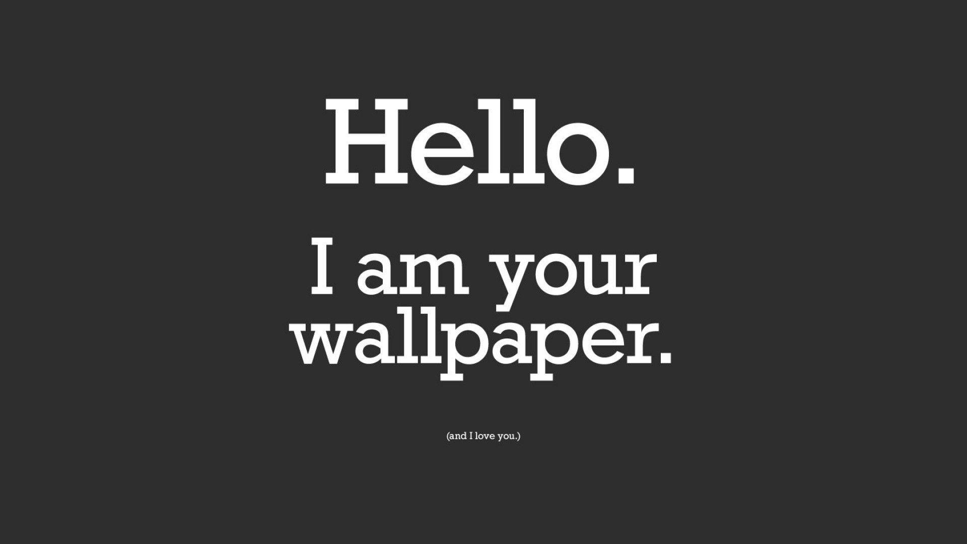 Funny Wallpaper Free Funny Hd Wallpaper Hd 6160
