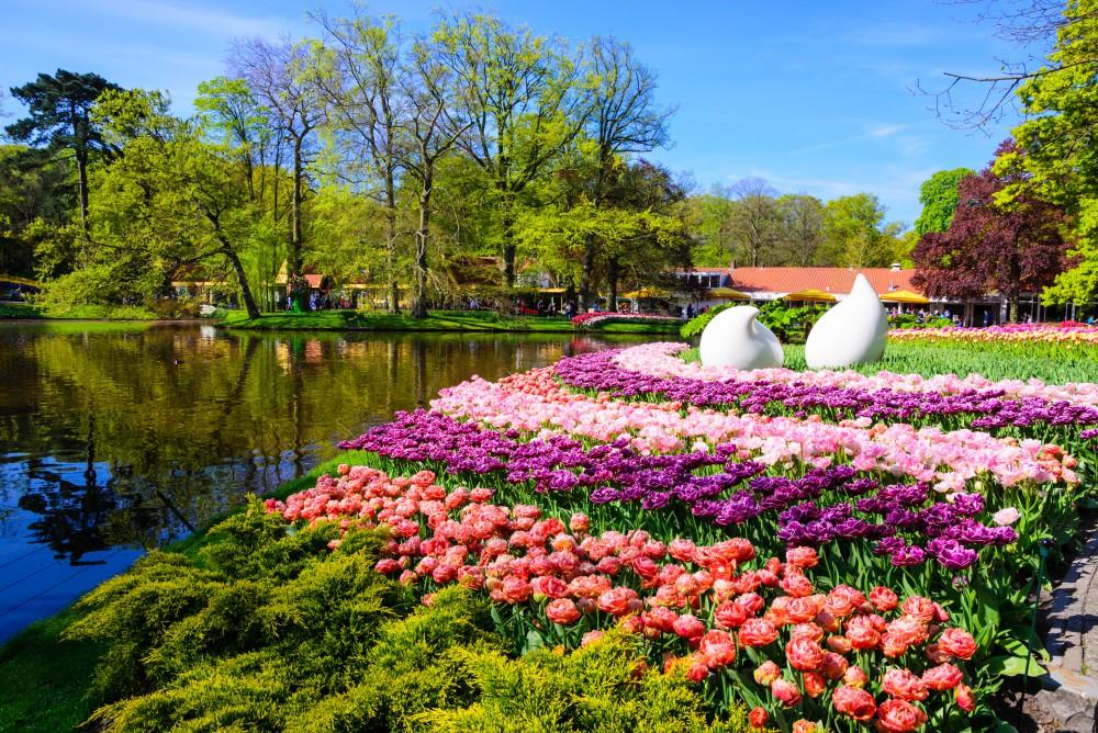 Beautiful Garden Image