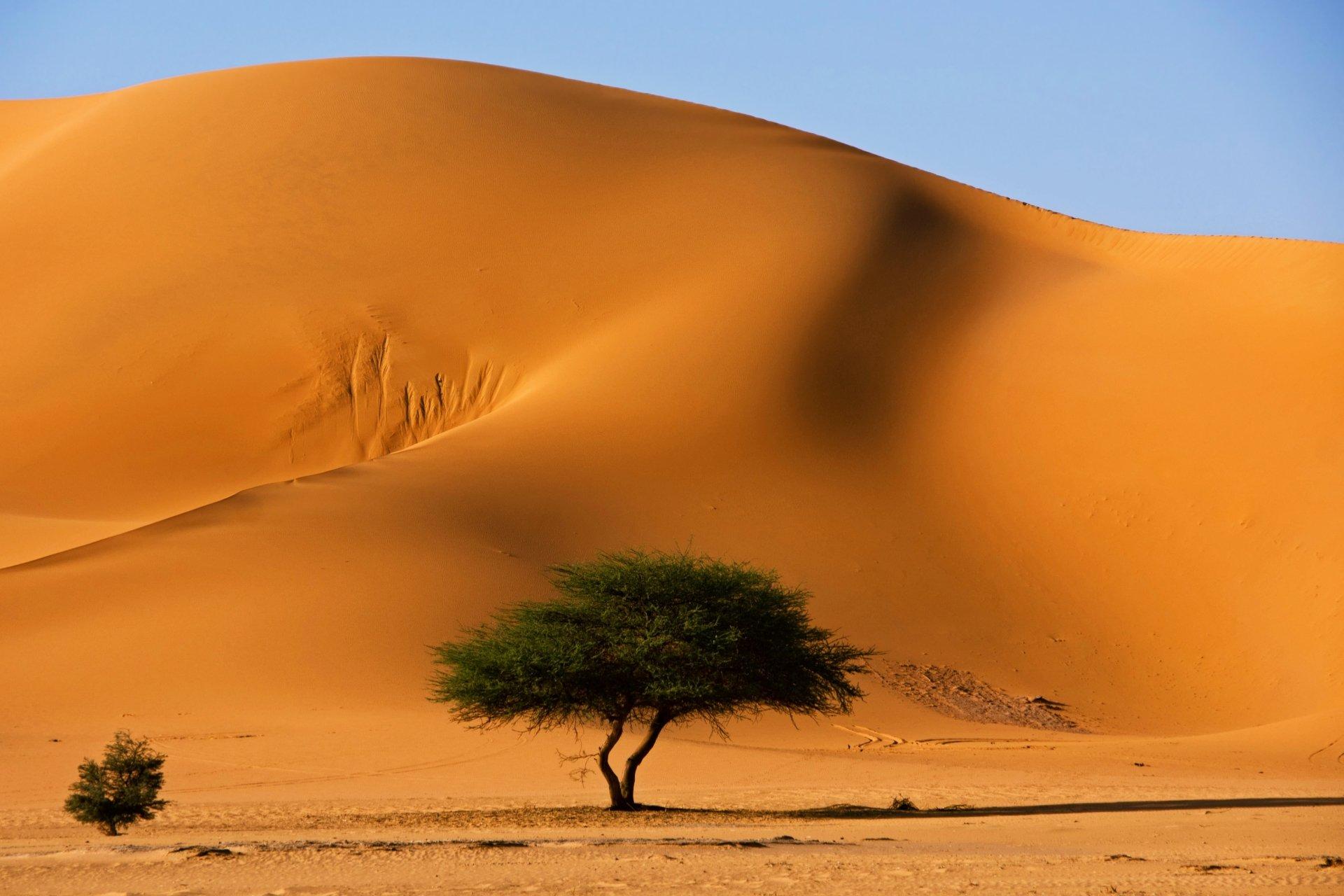 HD Sahara Backgrounds