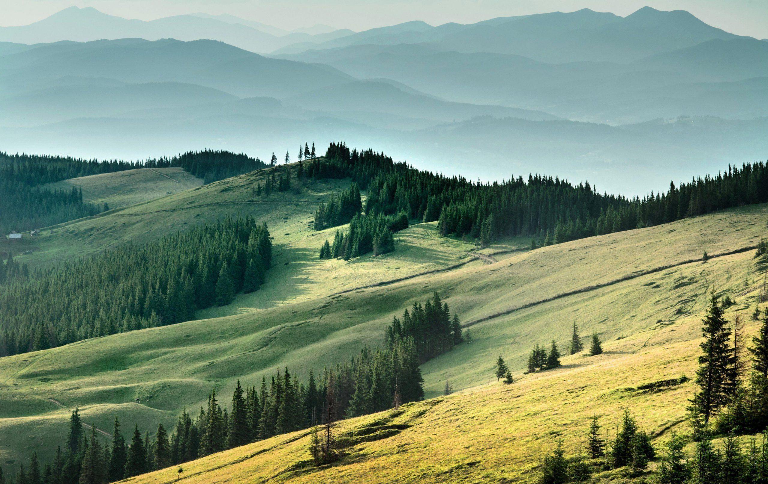 Ukraine Backgrounds