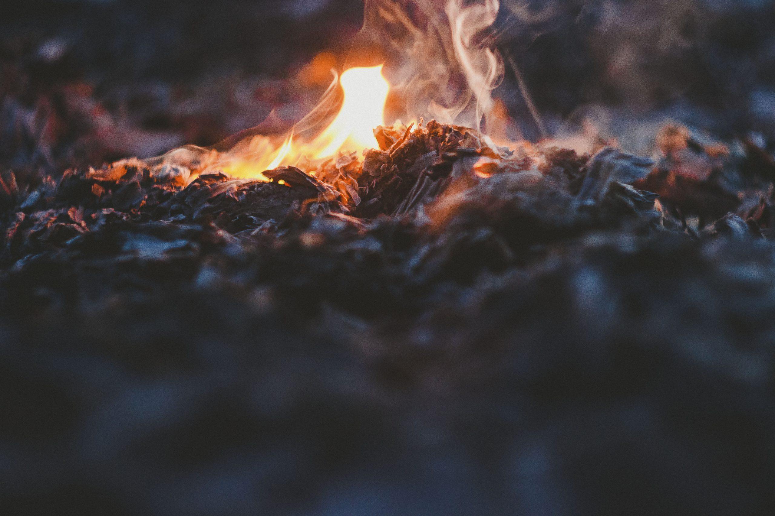 Ashes Image