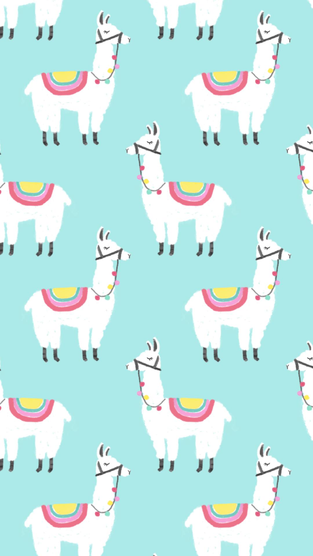 Llama Photo