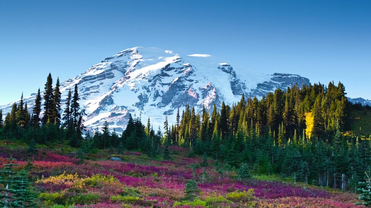 Mount Rainier Image