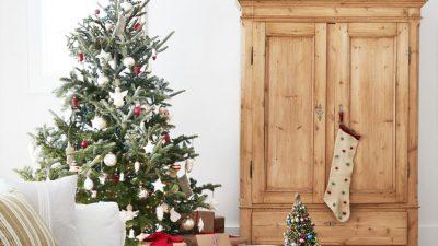 Beautiful, Christmas, Image, Tree, White, Winter