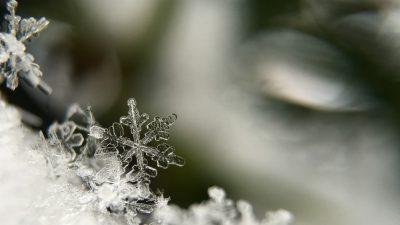 Cool, Desktop, Wallpaper, Winter, Wonderful
