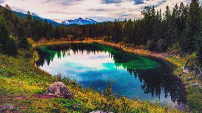 Clouds, Jasper, National, Park, Tree, White