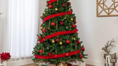 Animated, Beautiful, Christmas, Green, Image, Tree