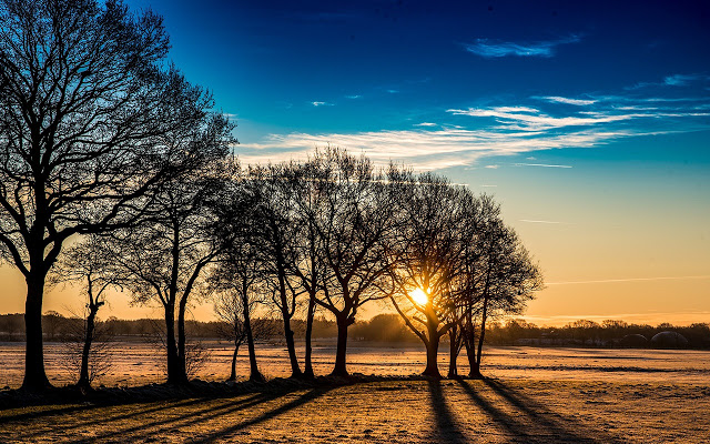Sunrise Backgrounds