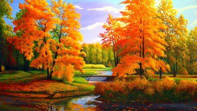 Beautiful, Desktop, Natural, Tree, Wallpaper, Yellow