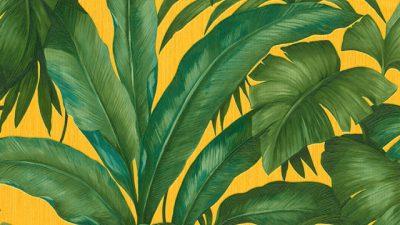Decor, Hd, Home, Tropical, Wallpaper