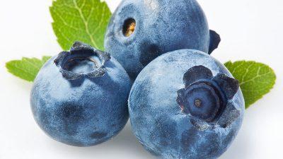 Blueberry, Food, Healthy, Photo, Purple