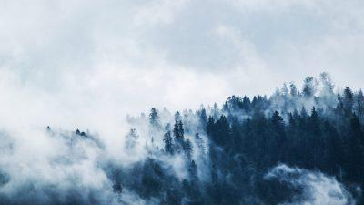 Clouds, Fog, Natural, Wallpaper, White