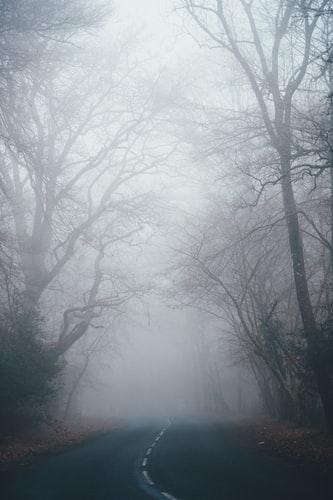 Fog Backgrounds