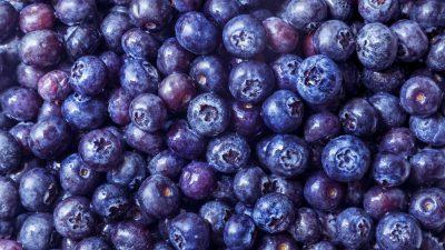 Blueberry, Fresh, Holding, Image, Woman
