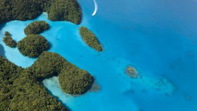Image, Landscape, Nature, Palau