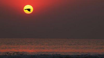 Background, Beautiful, Natural, Sea, Sunset