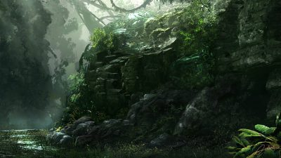 Best, Jungle, Landscape, Nature, Wallpaper